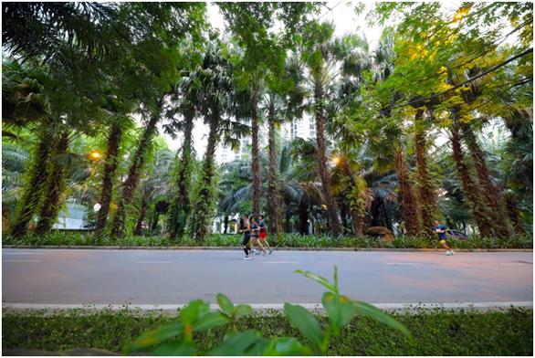 Chạy marathon trên cung đường ngập sắc xanh ở đô thị Ecopark - Ảnh 8.