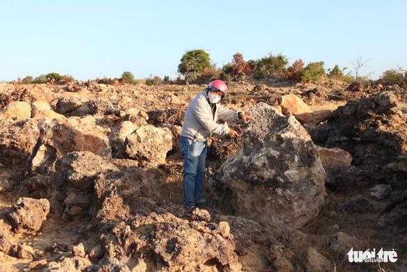 Ninh Thuận mời chuyên gia địa chất phân tích bãi đá cổ - Ảnh 4.