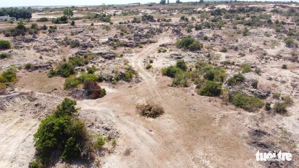 Ninh Thuận mời chuyên gia địa chất phân tích bãi đá cổ - Ảnh 2.