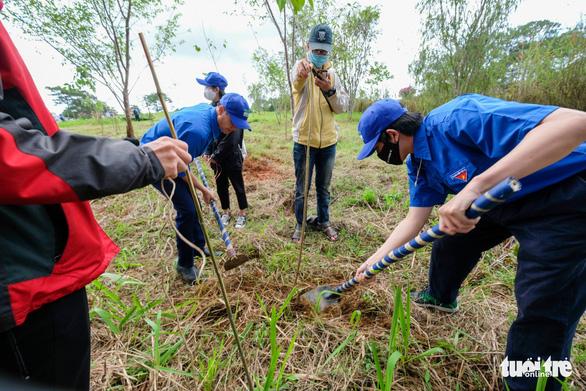 Phát động trồng rừng trong thành phố, thành phố trong rừng - Ảnh 2.