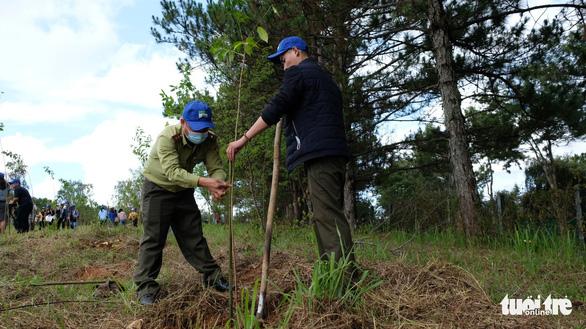 Phát động trồng rừng trong thành phố, thành phố trong rừng - Ảnh 4.