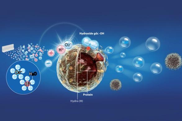 Plasmacluster Ion - Bộ sản phẩm diệt khuẩn công nghệ Nhật Bản - Ảnh 4.