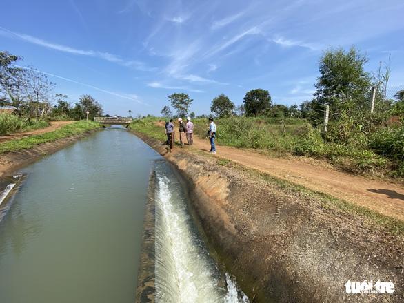 Kênh dẫn nước 15 tỉ đồng thấp hơn mặt ruộng do… bão - Ảnh 3.