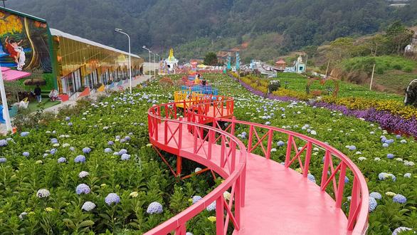 Lâm Đồng cấm kinh doanh lưu trú tại điểm du lịch canh nông - Ảnh 1.