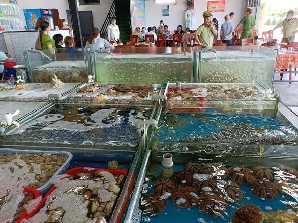 Nhà hàng bán ốc hương 1,8 triệu đồng/kg bị yêu cầu đóng cửa tạm thời - Ảnh 5.