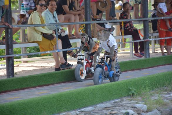 Long Phú, Yang Bay điểm đến vàng cho dịp lễ 30-4 - Ảnh 4.