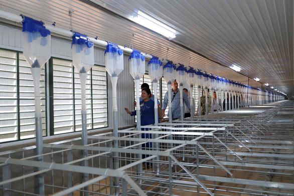 Japfa khánh thành trại heo Đắk Nhau quy mô 10.000 nái - Ảnh 3.