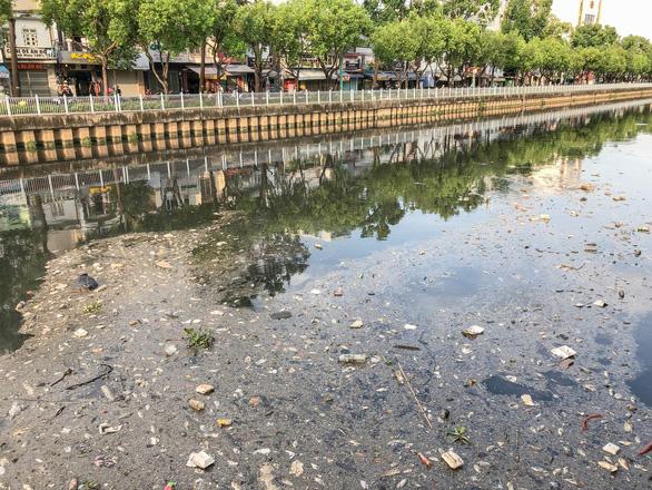Vớt hàng chục ghe cá chết trên kênh Nhiêu Lộc - Thị Nghè - Ảnh 1.