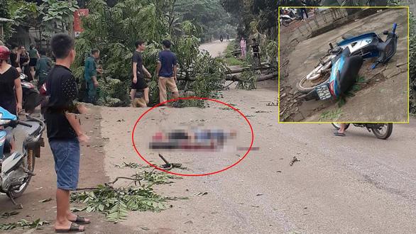 Chặt cây trước nhà, cây đổ ra đường đè chết người đi xe máy - Ảnh 1.