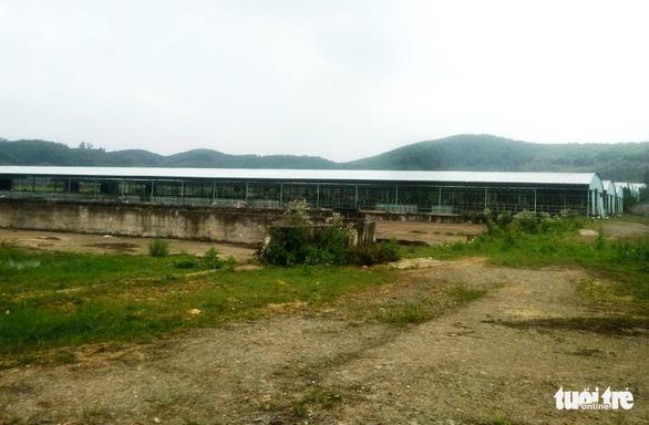 Dự án trại bò 'đầy tai tiếng' ở Hà Tĩnh xin giảm quy mô - Ảnh 2.