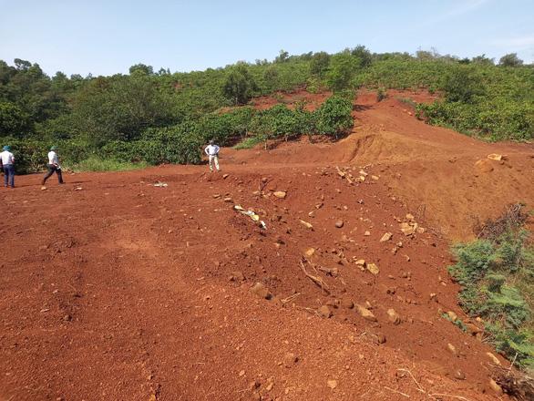 Tự ý mở đường, hủy hoại hơn 5.600m2 rừng phòng hộ: 2 người bị phạt... 22 triệu - Ảnh 3.