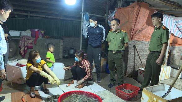 Bắt quả tang cơ sở bơm tạp chất hàng tấn tôm cho các nhà hàng Hà Nội mỗi tháng - Ảnh 1.