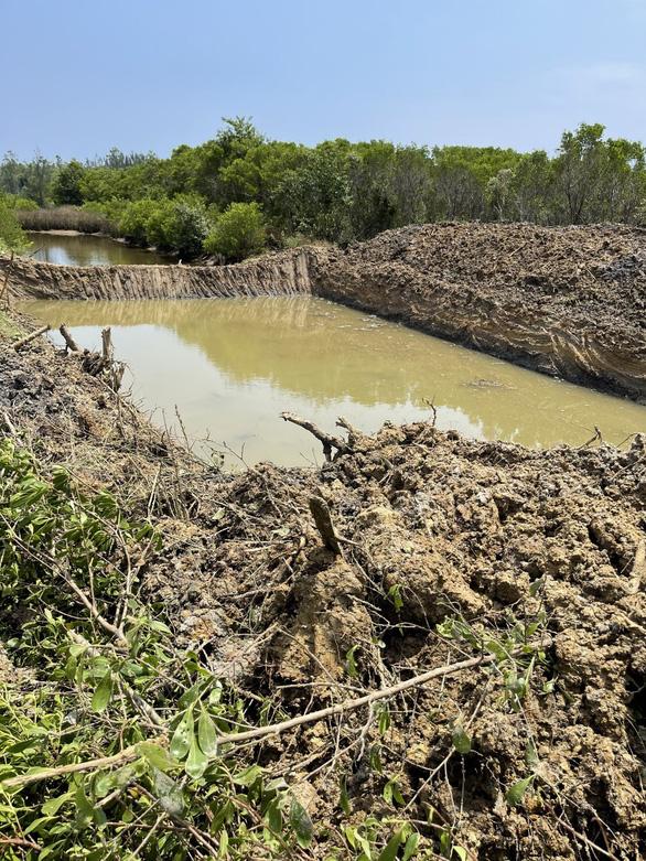 Tuyệt cảnh bàu Cá Cái bị đào bới, phá rừng nuôi trồng thủy sản - Ảnh 2.
