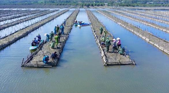 Tuyệt cảnh bàu Cá Cái bị đào bới, phá rừng nuôi trồng thủy sản - Ảnh 3.