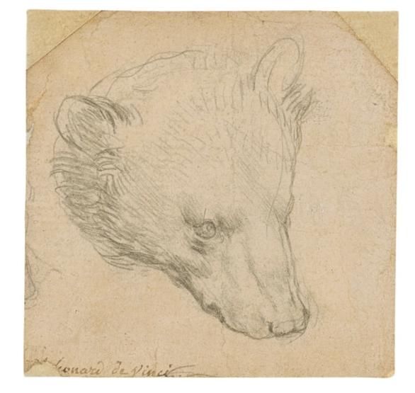 Phác họa đầu gấu của Leonardo da Vinci dự kiến bán 16 triệu USD - Ảnh 1.