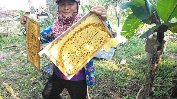 Mật ong Việt Nam gặp khó ở thị trường Mỹ - Ảnh 1.