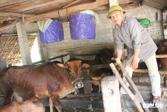 Chợ Hà Tĩnh vắng bóng thịt bò - Ảnh 2.