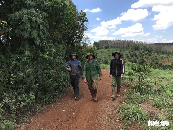 Tạm đình chỉ điều tra vụ 6 cựu chiến binh 'tham gia phá rừng' - Ảnh 1.