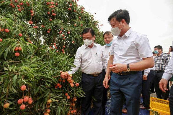 Bộ trưởng Lê Minh Hoan bàn cách tiêu thụ nông sản mùa đại dịch - Ảnh 1.