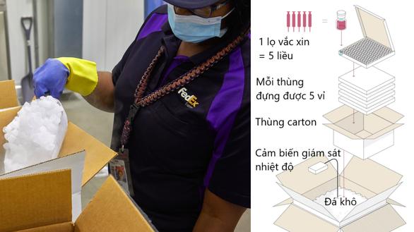 31 triệu vắc xin Pfizer Việt Nam mua sẽ bảo quản thế nào? - Ảnh 4.