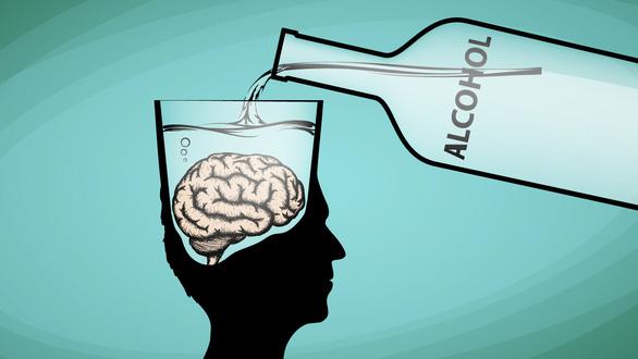 Uống rượu làm giảm chất xám? - Ảnh 1.