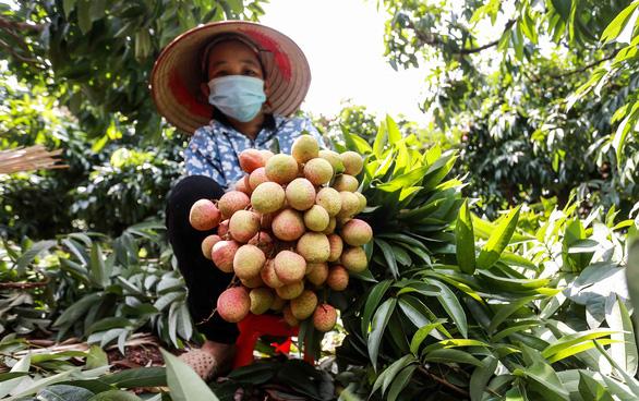 Phó thủ tướng yêu cầu tăng cường hỗ trợ, tiêu thụ nông sản cho Bắc Giang - Ảnh 1.