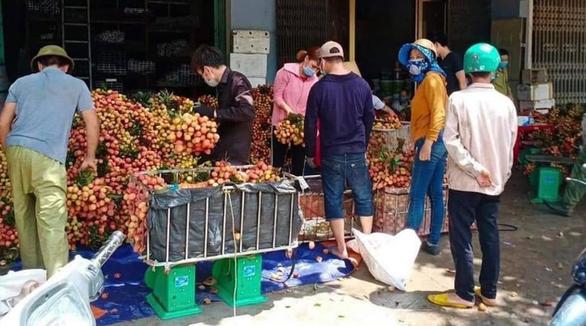 Vải thiều Lục Ngạn - Bắc Giang bị ép giá còn 2.000 đồng/kg? - Ảnh 1.