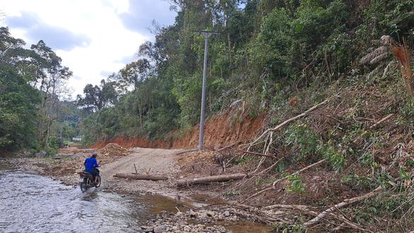 Phá rừng phòng hộ làm đường thi công thủy điện - Ảnh 7.