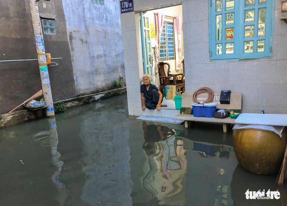 Không mưa, triều cường không lớn nhưng Mễ Cốc ở quận 8 vẫn ngập lênh láng - Ảnh 1.