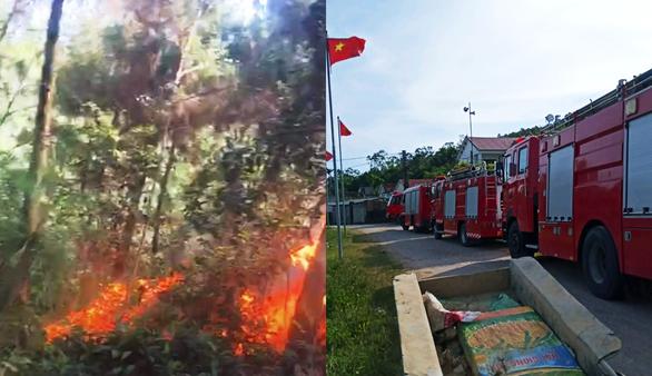 Cả trăm người đang dập lửa cứu rừng thông cháy trong nắng nóng - Ảnh 2.