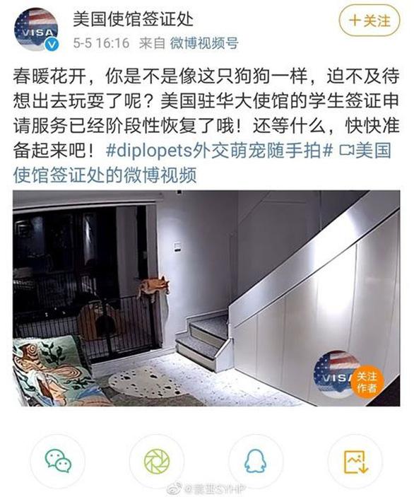 Đại sứ quán Mỹ xin lỗi việc đăng bài trên Weibo ví sinh viên Trung Quốc như chó - Ảnh 2.