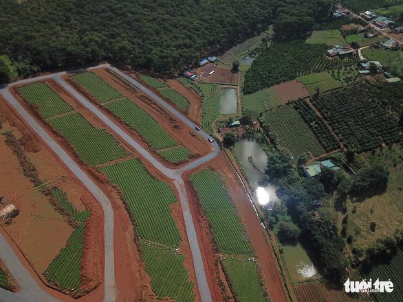 Thêm cán bộ TP Bảo Lộc bị đình chỉ liên quan hiến đất mở đường rầm rộ - Ảnh 1.