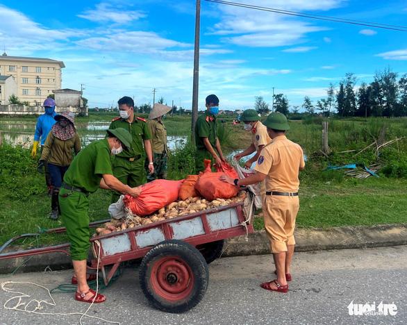 Chung tay thu hoạch hoa màu bị ngập úng cho người dân vùng phong tỏa - Ảnh 3.