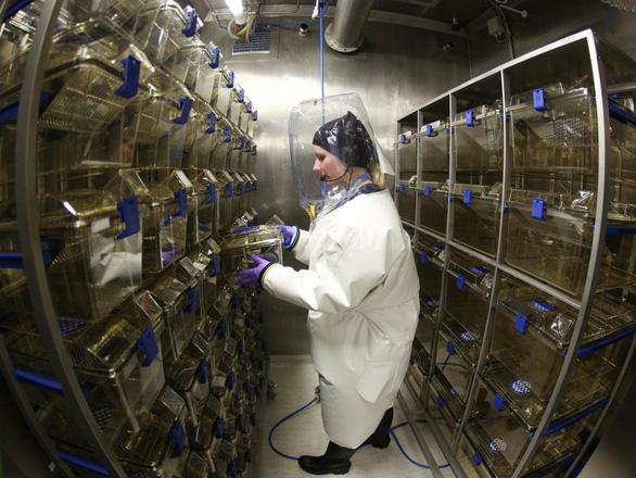 Virus thoát ra từ phòng thí nghiệm là nguy cơ có thật - Ảnh 2.