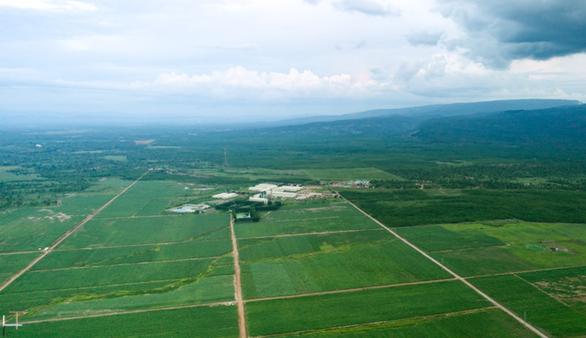 4 yếu tố giúp đường Biên Hòa luôn tăng trưởng mạnh mẽ - Ảnh 2.