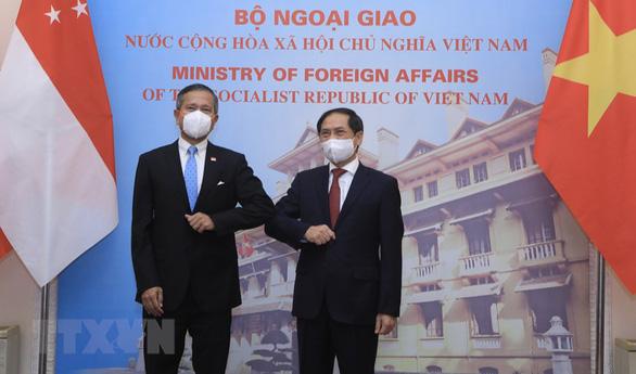 Singapore sẵn sàng hợp tác với Việt Nam về tiếp cận vắc xin, kinh tế số - Ảnh 1.