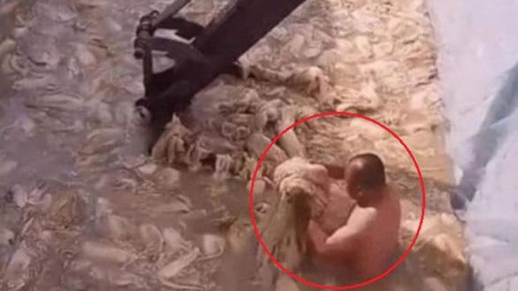 Video sốc một người đàn ông trần truồng làm kim chi, dân Hàn nghỉ ăn kim chi Trung Quốc - Ảnh 1.