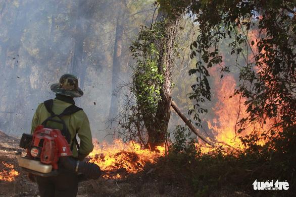 Cháy rừng cạnh doanh trại quân đội, Huế huy động gần 1.000 người chữa cháy - Ảnh 9.