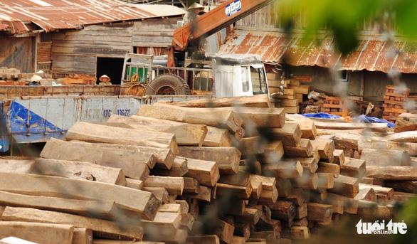 Làm rõ vụ tráo gỗ tang vật tại Cục Thi hành án dân sự Đắk Lắk vào đầu tháng 7-2021 - Ảnh 1.