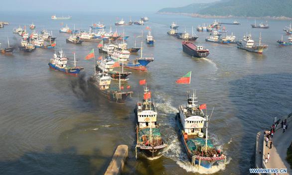 Trung Quốc tạm cấm tàu nước này bắt mực ở Thái Bình Dương, Đại Tây Dương - Ảnh 1.