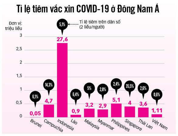 Các nước Đông Nam Á săn tìm vắc xin COVID-19 ra sao? - Ảnh 3.