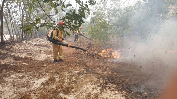 Rừng phòng hộ ven biển ở Quảng Nam bốc cháy ngùn ngụt nhiều giờ - Ảnh 1.
