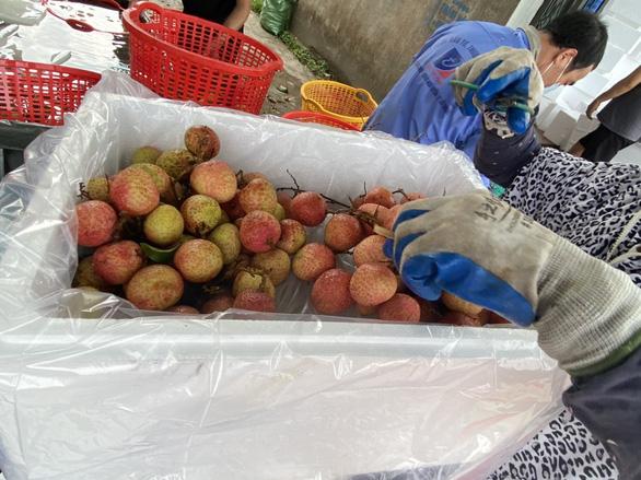 Mục tiêu bán 100 tấn vải thiều Bắc Giang trên Sendo - Ảnh 2.