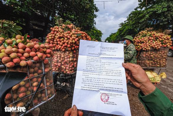Đà Nẵng vận động chợ, siêu thị tiêu thụ vải thiều giúp nông dân Bắc Giang, Hải Dương - Ảnh 1.