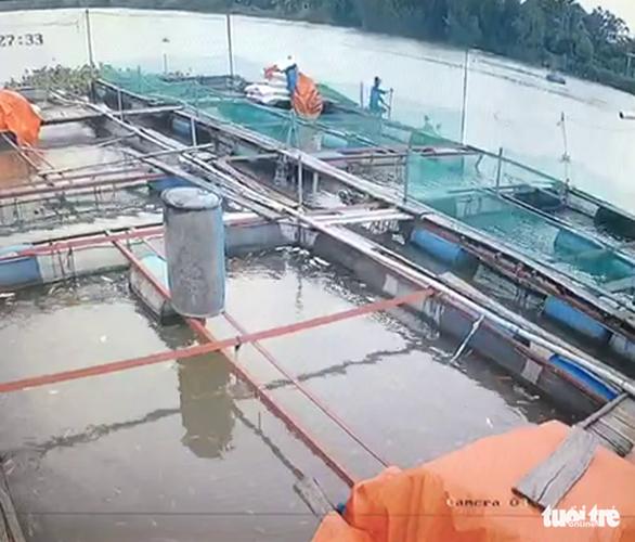 Người đàn ông bị điện giật chết khi chài cá ở sông Cái Cối - Ảnh 2.