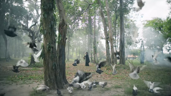 Artists singing to protect forests: Why promote filial piety but make mistakes with mother nature?  - Photo 5.