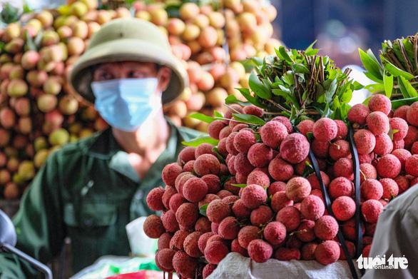 Vải thiều Việt Nam chất lượng vượt trội, ngon nhất ở thị trường Nhật Bản - Ảnh 1.