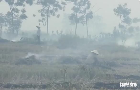 Bộ yêu cầu các tỉnh thành xử lý nghiêm việc đốt rơm rạ gây ô nhiễm - Ảnh 2.