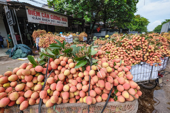 Bộ Nông nghiệp đề nghị 6 bộ cùng vào cuộc gỡ khó cho nông sản - Ảnh 2.