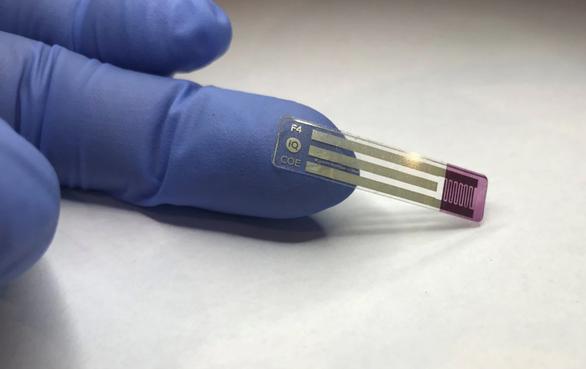 Úc phát triển thành công công nghệ đo đường huyết không cần lấy máu - Ảnh 1.